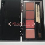 Bobbi Brown Earth Metal Lip and Eye Palette 1