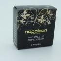 Napoleon Perdis Pro Palette Concealer Review & Swatches