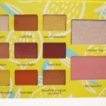 Tarte Adelaine Morin Eye & Cheek Palette Review & Swatches
